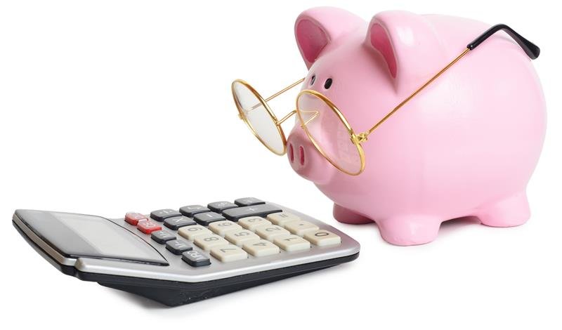 Money Smarts: How to Budget Your Income for Independent Living